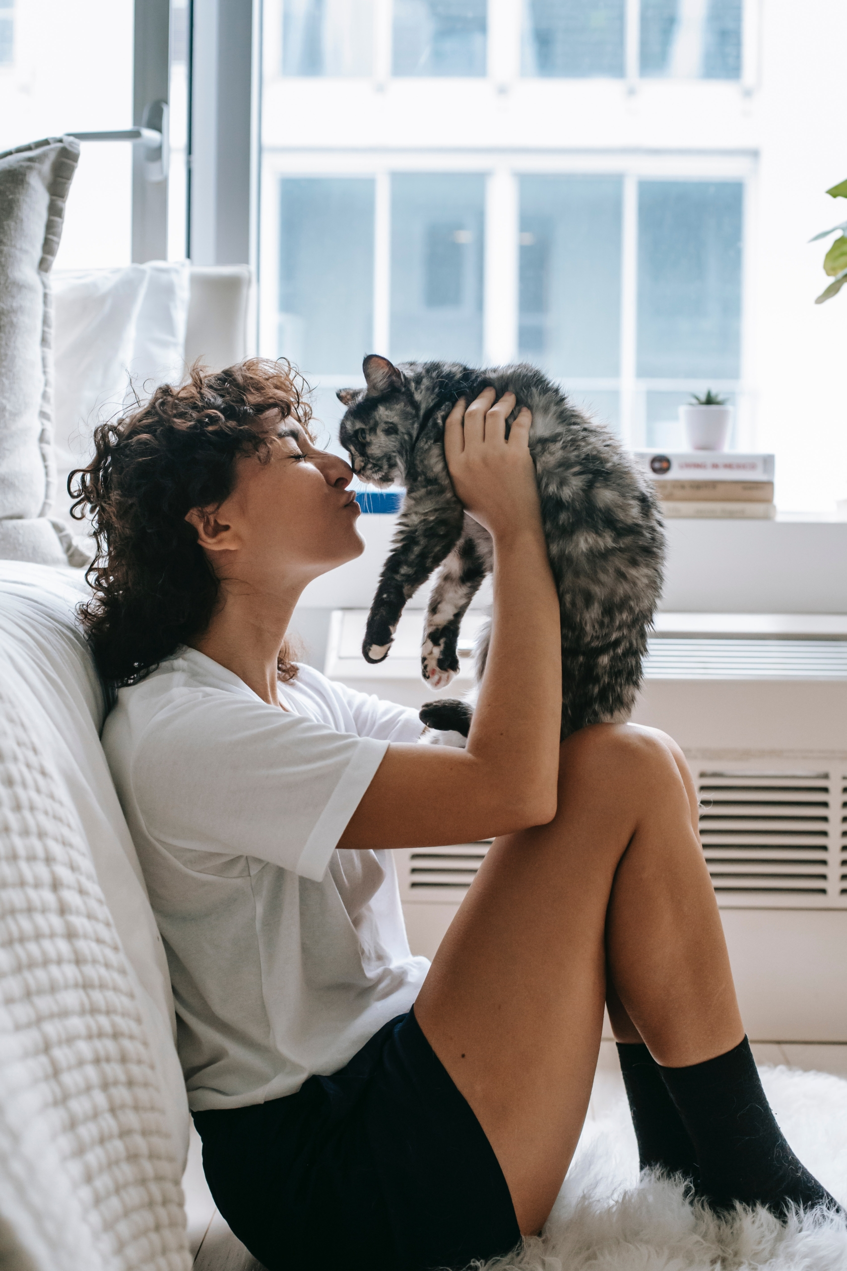 11 Signs Your Cat Loves You